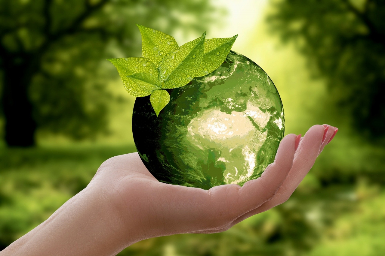 0212213_duurzaamheid.jpg